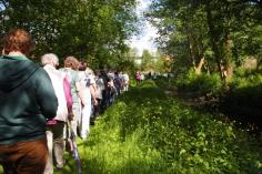 Eine laaange  Schlange zog entlang der Schillingsbek durch die letzte Lokstedter wilde Natur.