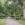 Die große Allee des alten Friedhofs gehörte einst zur Sommervilla der Berenberg-Gosslers.