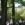 Der Obelisk am Heckenrosenweg wurde für eine früh verstorbene Tochter von Axen im ehemals riesigen Landschaftspark des Kollauer Hofes um 1799 errichtet.